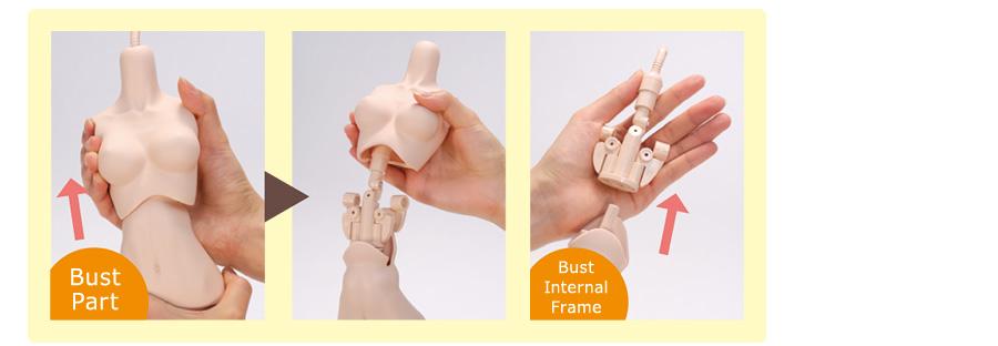 How to Remove The Bust / Bust Internal Frame